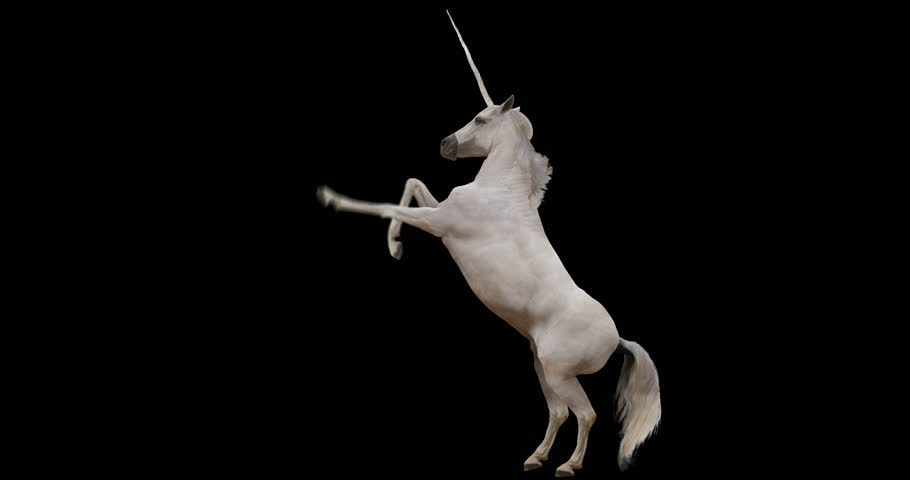 Unicorn rearing. Isolated animation. Alpha channel included. Royalty-Free Stock Footage #27106282