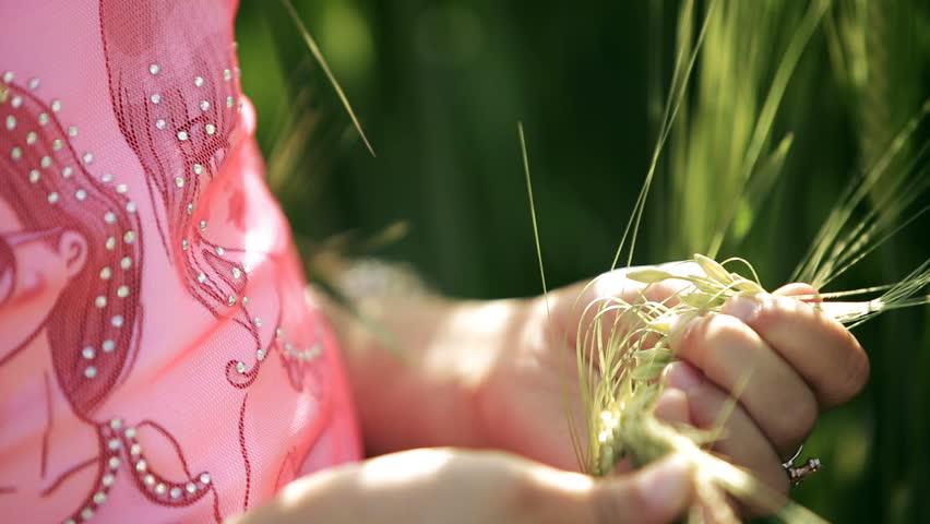 Little girl child fingering in hands a green ears of wheat. close-up | Shutterstock HD Video #27229831