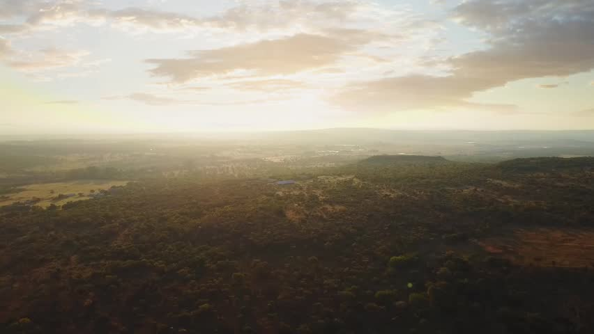 Arial Drone footage of African Tree Landscape