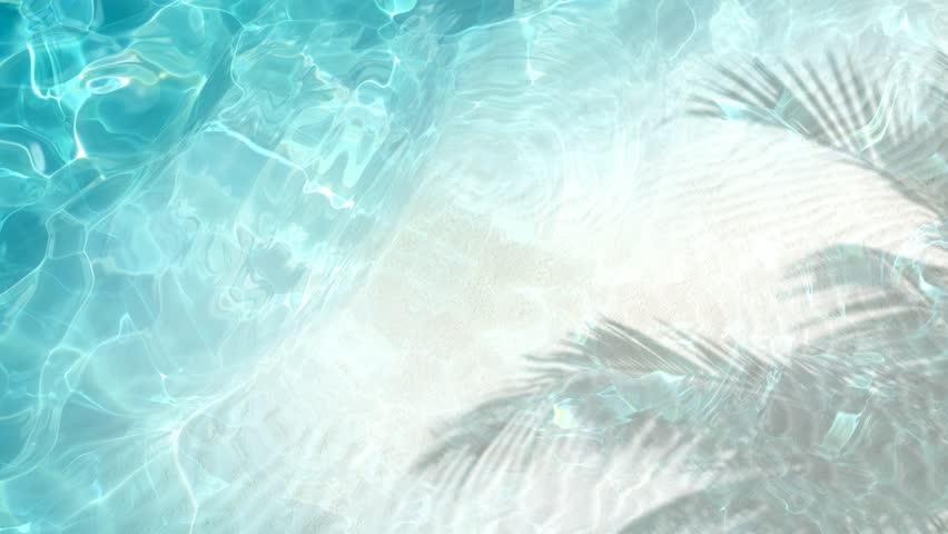 White sand beach Top view of crystal clean water surface, sea side white sand and palm shadow, sun shine bright water-pool loop background, 3d simulation animation  | Shutterstock HD Video #27277198