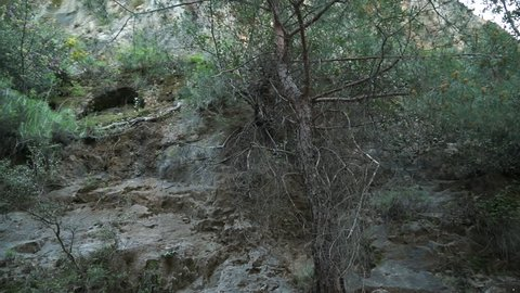 Qadisha Valley. Pan-left shot showing an ancient irrigation channel, which probably supplied the agricultural terraces and orchards of the valley.