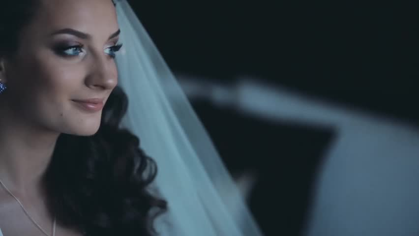Portrait of young brunette bride with beautiful make-up looking around. Attractive woman in wedding veil smiling. | Shutterstock HD Video #27561391