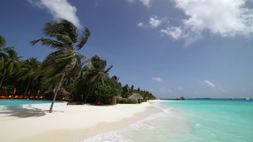 Luxury tropical scene with calm maldivian ocean water and palm tree cinematic seascape view in sunny ultraHD video using tripod   Shutterstock HD Video #27564928