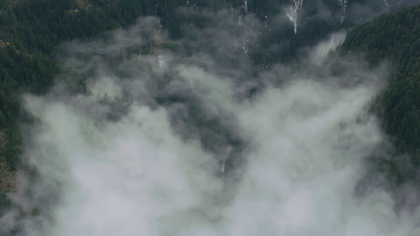 Aerial view of fog and trees in winter, Columbia River Gorge, Oregon | Shutterstock HD Video #27593797