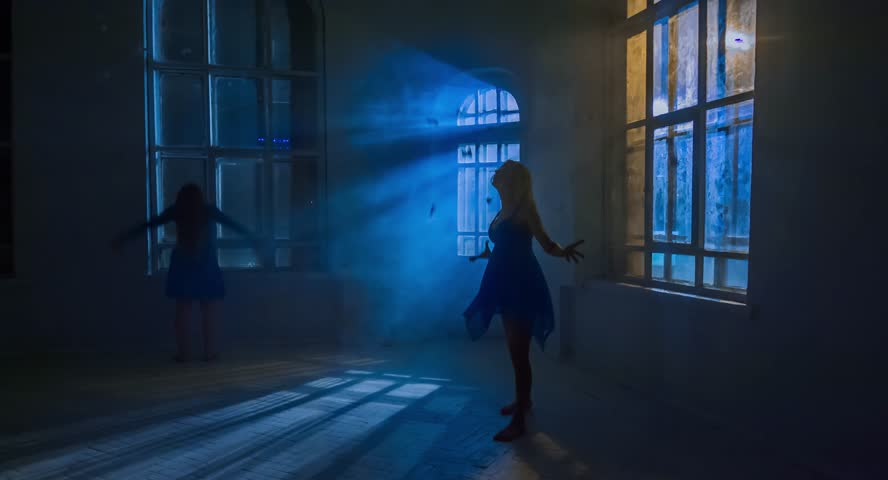 Two girls ballerinas performed modern theatrical dance in moonlight, silhouette | Shutterstock HD Video #27624499