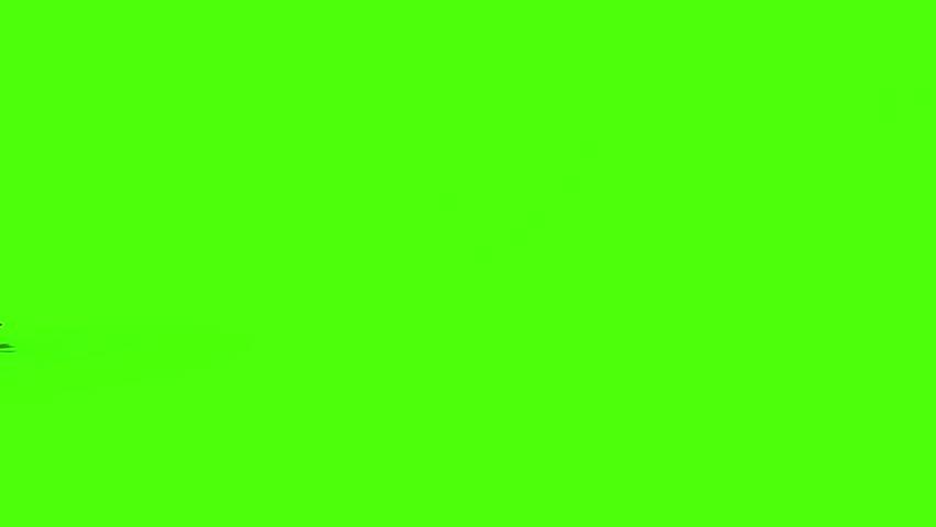 Doberman Animation #27649042