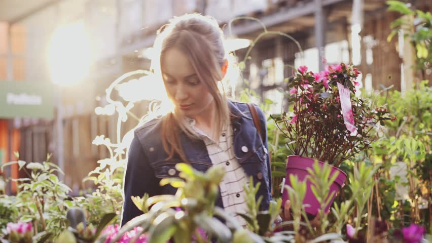 Woman Buying Flowers in a Sunlit Garden Shop. 4K. Young woman shopping for decorative plants on a sunny floristic greenhouse market. Home and Garden concept.