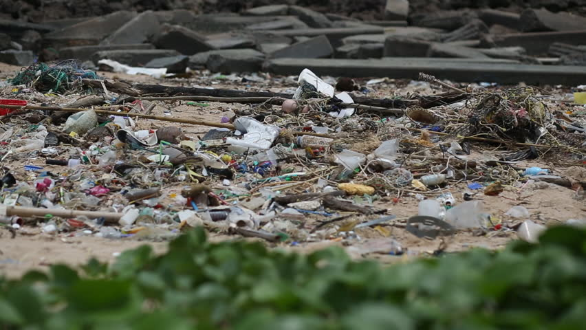 Garbage on the beach , panning video | Shutterstock HD Video #27731068