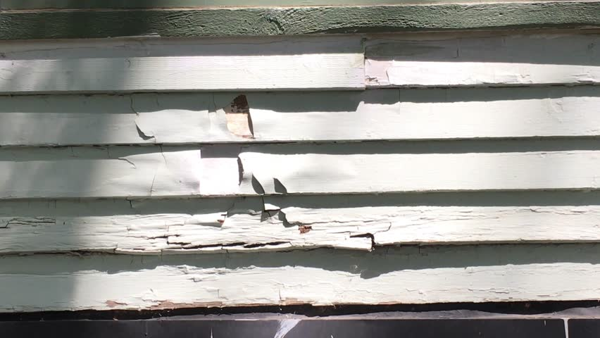 Power washing loose paint in sunlight with high pressure water blowing paint away from siding.