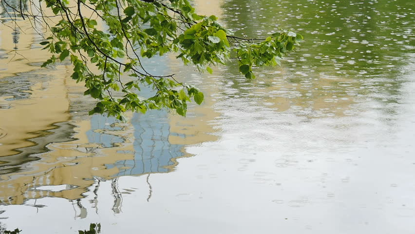 Drops of rain fall into the city pond. | Shutterstock HD Video #28103881