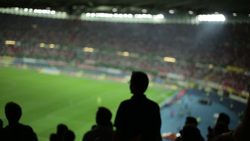 Soccer fans in stadium #2822725