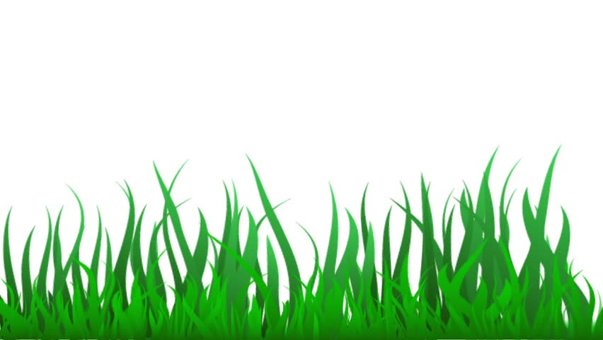 video animation background green grass stock footage video 100 royalty free 28281670 shutterstock video animation background green grass stock footage video 100 royalty free 28281670 shutterstock