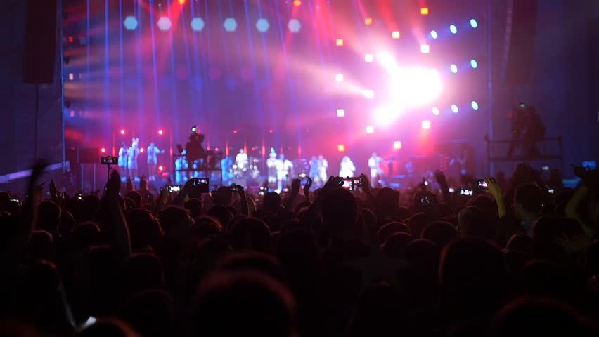 Rock Concert Crowd #28338001
