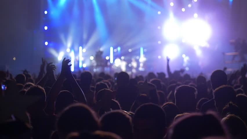 Rock Concert Crowd #28338031