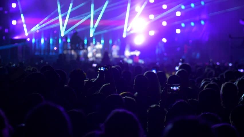 Rock Concert Crowd #28338085