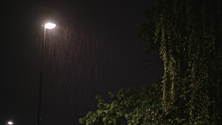 Rainy night. A solitary lamppost and a wet tree. Long shot view of raindrops against a lamppost bright light.