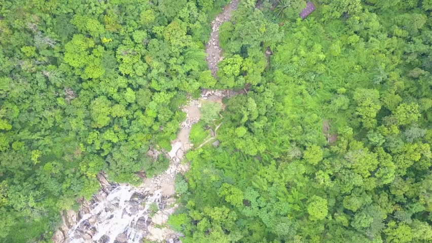 Aerial shot with a drone of a tropical rain forest in Thailand   | Shutterstock HD Video #28564261