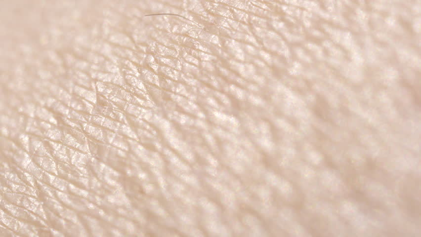 CLOSE UP MACRO DOF: Detail of dry Caucasian skin. Shaved woman's legs. Dry skin after depilation and waxing. Hairless skin pattern | Shutterstock HD Video #28656037