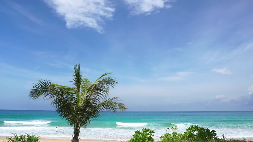 Palm trees with tropical sea in summer season in phuket thailand   Shutterstock HD Video #28735156