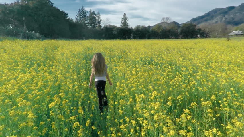 Aerial drone view of young girl running in a flower meadow orchid with her dog in slow motion. Napa, California. 25 February 2015   Shutterstock HD Video #28805731