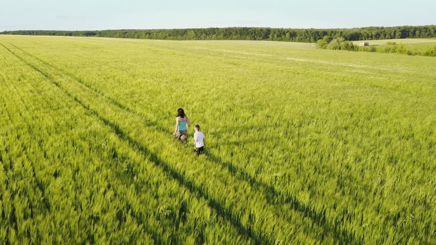 Mother having fun with his son in the green wheat field | Shutterstock HD Video #28839052