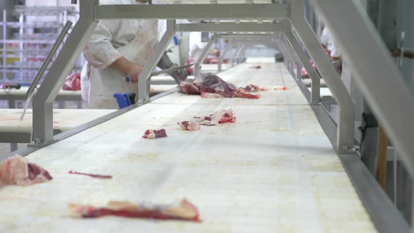 Workers prepare raw beef meat for delivery to stores  | Shutterstock HD Video #28939711