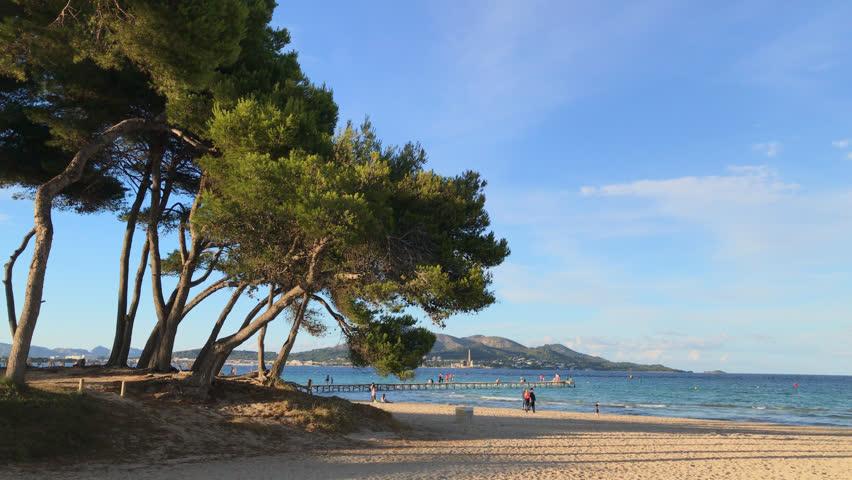 Majorca beautiful sandy beach. Playa de Muro, Mallorca, Spain