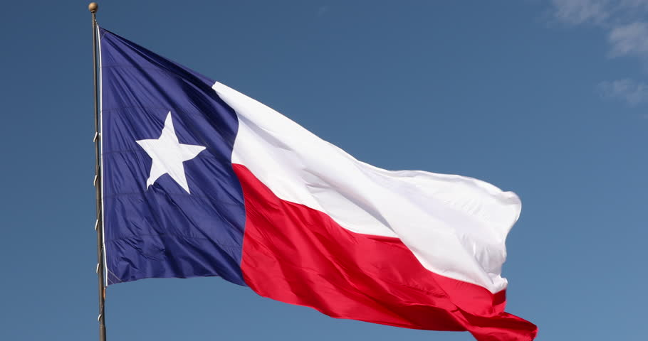 State flag of Texas USA
