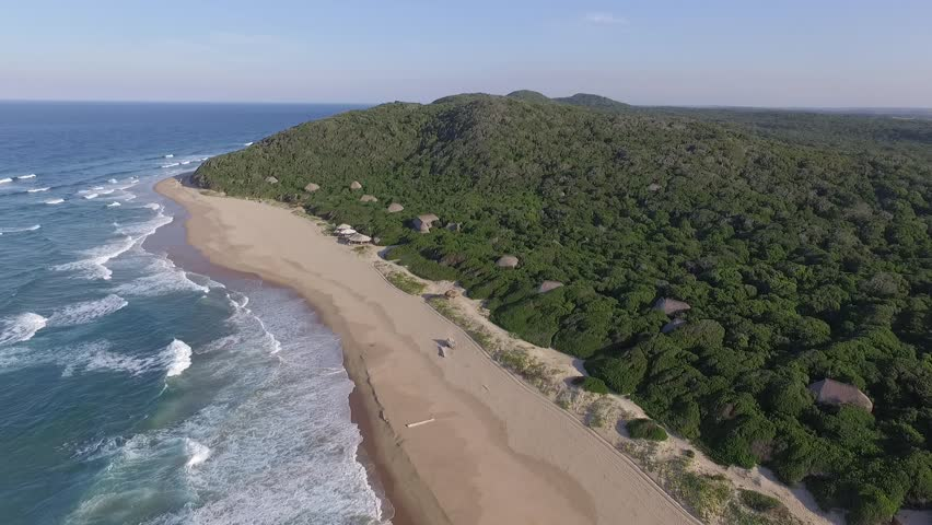 This video of the Mozambique coasts features the beach lodge Anvil Bay. It is a classic example of East African Coastal Mangrove. The lodge is located in the Maputo Special Reserve.
