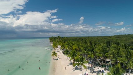 Aerial video over tropical island beach Punta Cana, Dominican Republic. Palm trees and white sand.