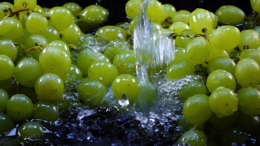 Amazing waterfall for fresh green grapes in bunches, laying in shallow water on black background in back-light. Excellent slow motion for vibrant intro in HD. Shooting with high-speed, 240fps, camera. | Shutterstock HD Video #29500318