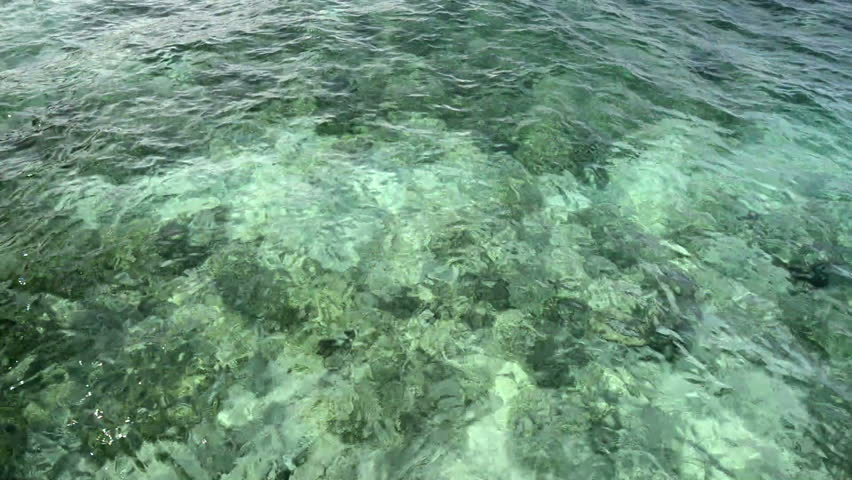 Reflection of clean sea water | Shutterstock HD Video #2969173