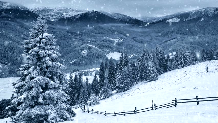 Winter Background Falling Snow Trees Stock Footage Video 100 Royalty Free 29746063 Shutterstock