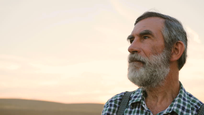 Close up portrait of old fermer with beard in the hat in the golden field on the colorful sky background. #29822374