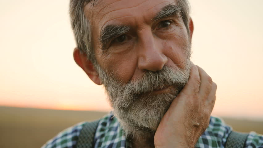 Close up portrait of senior man looking to the camera and touching his beard on the golden field background. #29822434