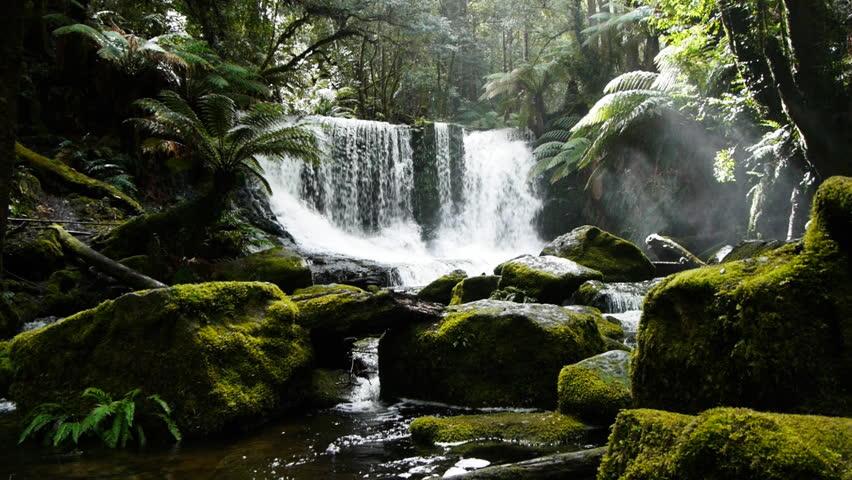 a dolly shot of horseshoe falls in tasmania, australia