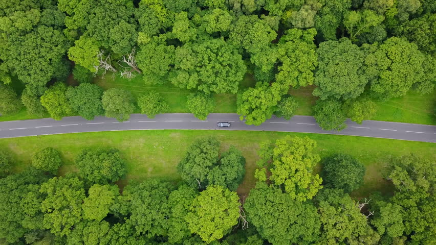 4K aerial follow overhead car on road through avenue of trees, UK | Shutterstock HD Video #29997382