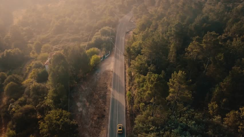 Aerial view of a car riding on the highway through the forest on the countryside. Cinematic drone footage of a car riding away from camera in pine forest road during sunrise in Europe.
