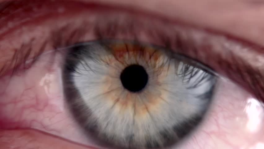 Close-up of a Male's Eye | Shutterstock HD Video #3019267
