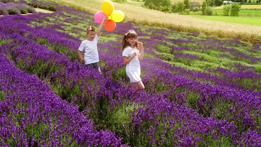 Two kids with balloons in lavender field, summer freedom concept | Shutterstock HD Video #30201775