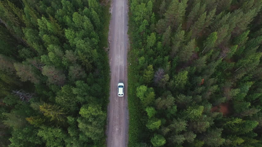 Aerial view of white car driving on country road in forest. Cinematic drone shot flying over gravel road in pine tree forest | Shutterstock HD Video #30202843