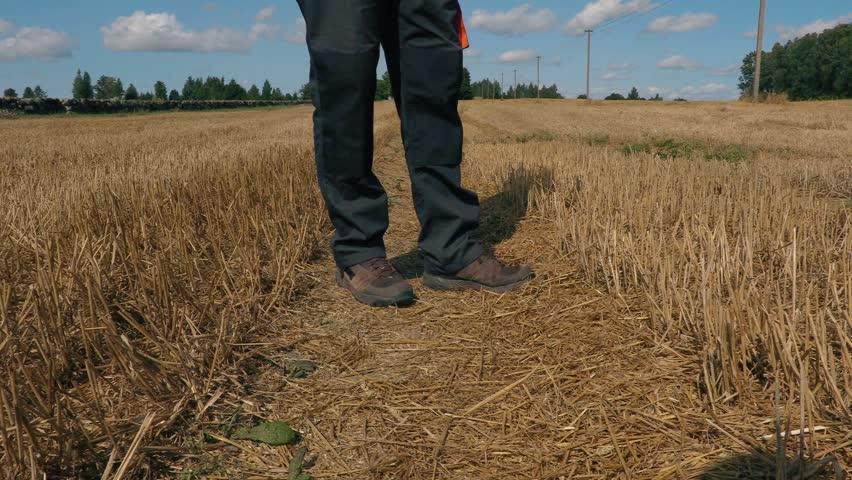 Farmer with tablet on field in summer    Shutterstock HD Video #30211849