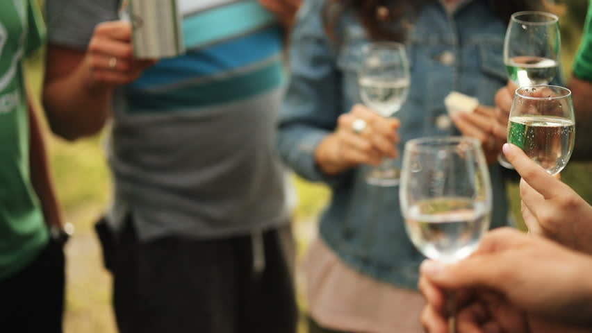 Friends drink champagne knocking glasses in the mountains. Celebrating. Glasses with Sparkling Champagne. | Shutterstock HD Video #30332860