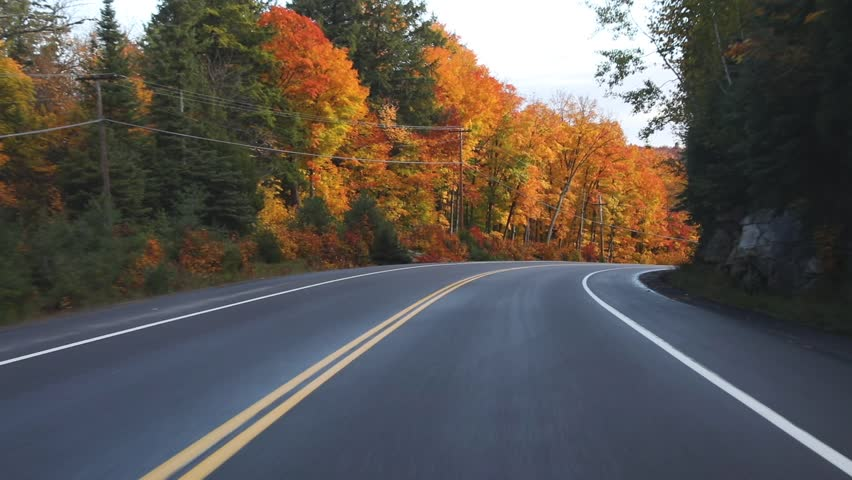 Driving on American highway with trees around in autumn. Empty road in Ontario, Canada, with colorful maple trees during the fall season. Travel and transportation concepts   Shutterstock HD Video #30509374