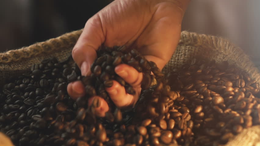 High quality video of taking coffee beans in real 1080p slow motion 250fps