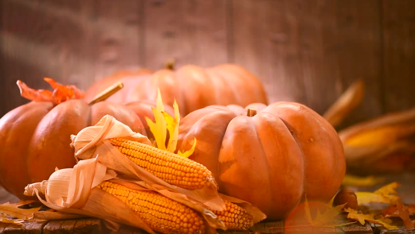 Thanksgiving Day. Pumpkin, Squash. Happy Thanksgiving Day wooden Table Background decorated with pumpkins, corn comb, candles and autumn leaves garland. Holiday Autumn festival scene, Fall, Harvest 4K | Shutterstock HD Video #30693826
