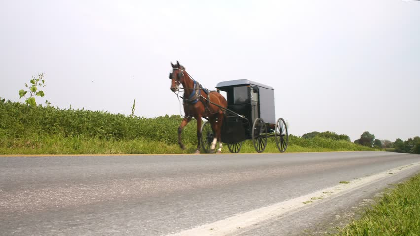 An Amish horse drawn buggy travels down a lonely road in Lancaster County, Pennsylvania.