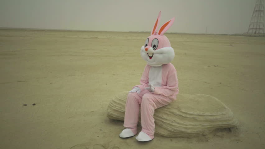 Easter rabbit sits on stone in desert. claps hands by knees. Crazy maniac or psycho in pink rabbit costume is sitting on sand | Shutterstock HD Video #30812182
