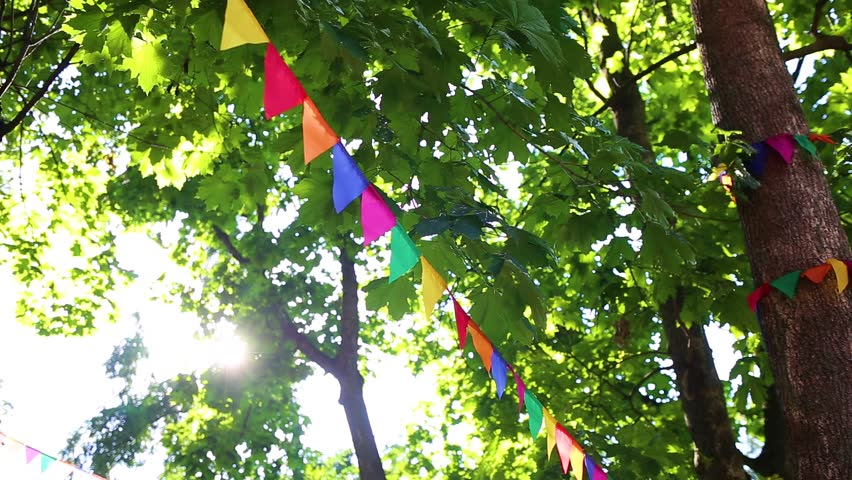 Colorful cute flags hanging on branches of trees as festive decoration for outdoor party. Bright summer sunshine among green leaves in background. Real time full hd video footage. | Shutterstock HD Video #30904819