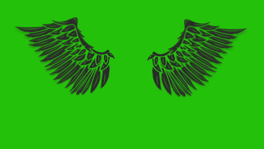 Wings On Green Background Angel